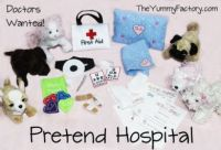 Pretend Hospital Doctor Set